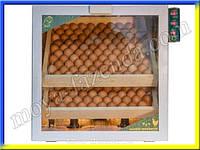 Инкубатор на 200 яиц с регулятором влажности купить