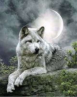 Алмазная вышивка Волк под луной 30 х 40 см (арт. FR503)