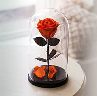 Роза в Колбе Оранжевый Цитрин 5 карат