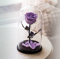 Роза в Колбе Сиреневый Жемчуг 5 карат
