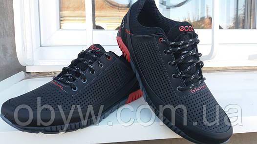 Кроссовки кожаные мужские Ecco   продажа, цена в Днепре. кроссовки ... 10a03289ce6