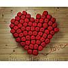 Фотокартина на холсте Сердце