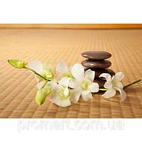 Фотокартина на холсте Орхидея. Дзен