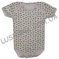 Бодик - футболка Лето на рост 56-62 см - Рибана