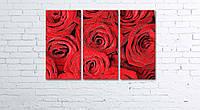 Модульная картина на холсте 3 в 1 Розы 60х90 см, фото 1