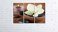 Модульная картина на холсте 3 в 1 Белая орхидея 60х90 см, фото 1