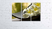 Модульная картина на холсте 3 в 1 Белый цветок в чаше 60х90 см, фото 1