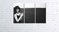 Модульная картина на холсте 3 в 1 Настоение 60х90 см, фото 1