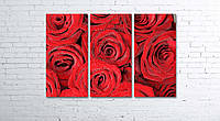 Модульная картина на холсте 3 в 1 Розы 80х120 см