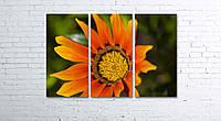 Модульная картина на холсте 3 в 1 Оранжевый цветок 80х120 см, фото 1