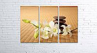 Модульная картина на холсте 3 в 1 Орхидея. Дзен 80х120 см, фото 1