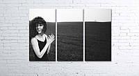 Модульная картина на холсте 3 в 1 Настоение 80х120 см, фото 1