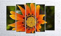 Модульная картина на холсте 5 в 1 Оранжевый цветок 100х150 см (секции разного размера)