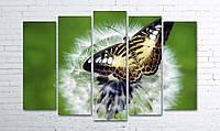 Модульная картина на холсте 5 в 1 Бабочка на одуванчике 100х150 см (секции разного размера)