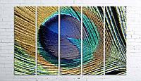 Модульная картина на холсте 5 в 1 Перо павлина 100х150 см