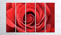 Модульная картина на холсте 5 в 1 Большая роза 100х150 см