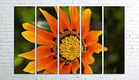 Модульная картина на холсте 5 в 1 Оранжевый цветок 100х150 см