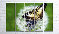Модульная картина на холсте 5 в 1 Бабочка на одуванчике 100х150 см