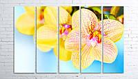 Модульная картина на холсте 5 в 1 Орхидеи 100х150 см