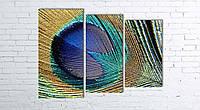 Модульная картина на холсте 3 в 1 Перо павлина 80х106 см (секции разного размера)