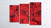 Модульная картина на холсте 3 в 1 Розы 80х106 см (секции разного размера)