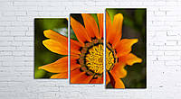 Модульная картина на холсте 3 в 1 Оранжевый цветок 80х106 см (секции разного размера)