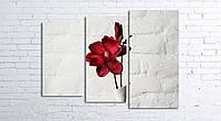 Модульная картина на холсте 3 в 1 Красный цветок в белой вазе 80х106 см (секции разного размера)