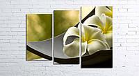 Модульная картина на холсте 3 в 1 Белый цветок в чаше 80х106 см