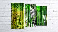 Модульная картина на холсте 3 в 1 Бамбук 80х106 см