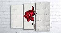 Модульная картина на холсте 3 в 1 Красный цветок в белой вазе 100х130 см (секции разного размера)
