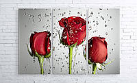 Модульная картина на холсте 3 в 1 Розы на сером 100х150 см