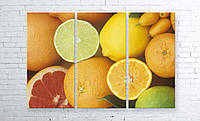 Модульная картина на холсте 3 в 1 Фрукты 100х150 см