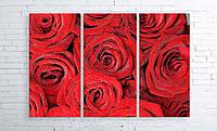Модульная картина на холсте 3 в 1 Розы 100х150 см