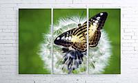Модульная картина на холсте 3 в 1 Бабочка на одуванчике 100х150 см