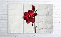 Модульная картина на холсте 3 в 1 Красный цветок в белой вазе 100х150 см