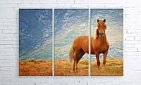 """Модульна картина на полотні """"Рудий кінь"""""""
