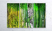 Модульная картина на холсте 3 в 1 Бамбук 100х150 см