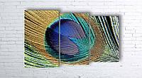 Модульная картина на холсте 3 в 1 Перо павлина 100х160 см (секции разного размера)