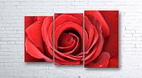 Модульная картина на холсте 3 в 1 Большая роза 100х160 см (секции разного размера)