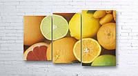 Модульная картина на холсте 3 в 1 Фрукты 100х160 см (секции разного размера)