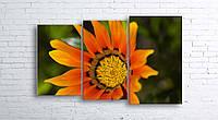 Модульная картина на холсте 3 в 1 Оранжевый цветок 100х160 см (секции разного размера)