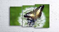 Модульная картина на холсте 3 в 1 Бабочка на одуванчике 100х160 см (секции разного размера)