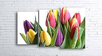 Модульная картина на холсте 3 в 1 Тюльпани на белом 100х160 см (секции разного размера)