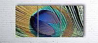 Модульная картина на холсте 3 в 1 Перо павлина 100х180 см