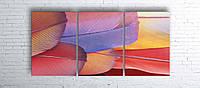Модульная картина на холсте 3 в 1 Перья 100х180 см