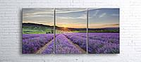 Модульная картина на холсте 3 в 1 Лавандовое поле 100х180 см