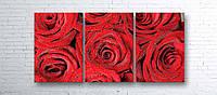 Модульная картина на холсте 3 в 1 Розы 100х180 см