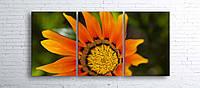 Модульная картина на холсте 3 в 1 Оранжевый цветок 100х180 см