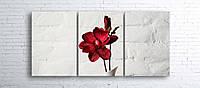 Модульная картина на холсте 3 в 1 Красный цветок в белой вазе 100х180 см
