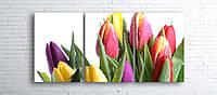 Модульная картина на холсте 3 в 1 Тюльпани на белом 100х180 см